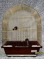 Клетка для мелких птиц и попугаев 30*23*39 см., фото 1