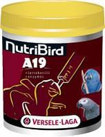 Versele-Laga Искусственное выкармливание птенцов. NutriBird A19 - 800г, фото 1