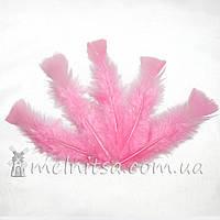 Перья индейки 12-18 см, нежно-розовый (5 шт)