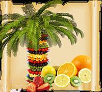 Фруктовая пальма. Заказать Киев