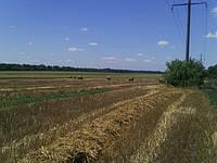 Деструкция стерни(целлюлозы) для подготовки поля для посева озимых  зерновых и озимого рапса в августе-сентябре 2017 года.