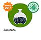 Семена подсолнечника АНЦИЛЛА 106 дн., фото 4