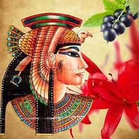 Косметические отдушки для мыла, свечей, косметики ручной работы Королева Нила