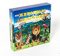 """Развивающие карточки для детей """"Животные дикого мира"""""""