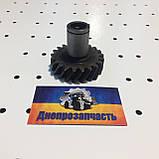 Шестерня привода НШ10 МТЗ   Д240, фото 4