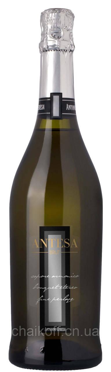 Вино игристое Antesa Brut Antonini Geresa 0.75 л (шт.)