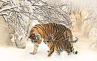 Схема для бисера Тигрица с тигренком