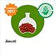 Семена кукурузы АМЕЛИ (ФАО 290) , фото 4
