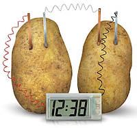 Годинник в картоплині Potato Clock / Часы в картошке (часы работающие от овощей), набор для опытов