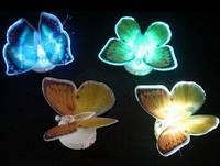 Нічник Метелик із підсвіткою, 7 кольорів / Ночник Бабочка с подсветкой, 7 цветов