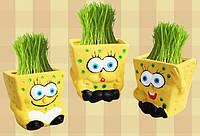 Трав'янчик Губка Боб / Травянчик Sponge Bob