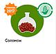 Семена кукурузы Соломон (ФАО 320), фото 4
