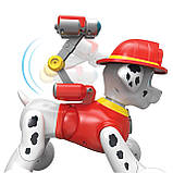 Інтерактивне щеня Маршал Paw Patrol Zoomer Marshall, фото 4