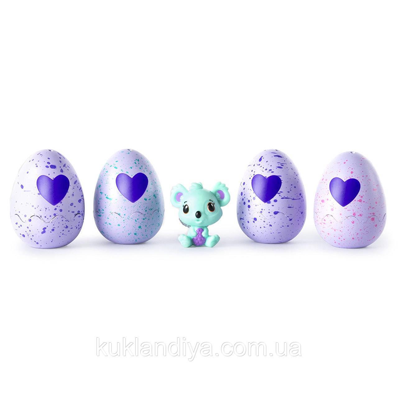 Игровой набор Hatchimals CollEGGtibles из 4  коллекционных фигурок в яйцах + бонусная фигурка (в ассортименте) - КукляндиЯ - интернет магазин игрушек  kuklandiya.com.ua   в Харькове