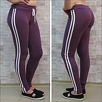 Спортивные брючки-леггинсы женские, cotton, Турция. Узкие спортивные штаны женские из хлопкового трикотажа. , фото 1