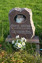 Памятник для животных, фото 3