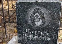 Памятник для животных, фото 2