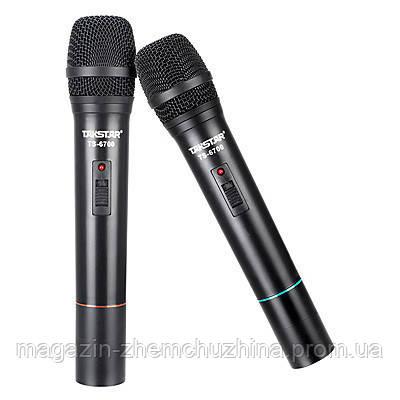 Профессиональная радиосистема Takstar TS-6700HH, беспроводные микрофоны, фото 2