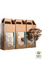 """Набор для выращивания грибов вешенка """"Грибная коробка"""" 1.25кг"""