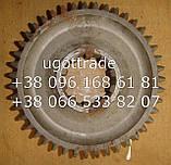 Шестерня КПП Т-16 1й передачи Т16.37.121, фото 3