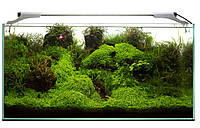 Светодиодный светильник AquaEl LEDDY SLIM Sunny, 100-120 см