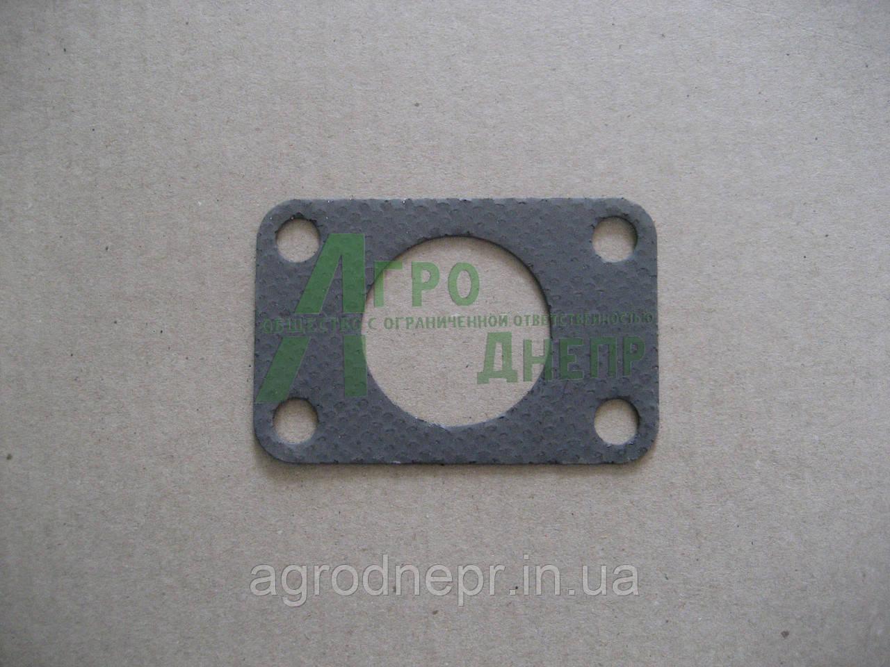 Прокладка переходника выхлопной трубы Д-240 50-1008028