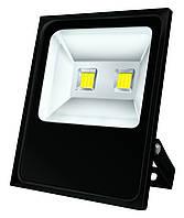 Прожектор LED NEOMAX 100W 220V IP65 6500K