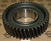 Зубчатое колесо 1-ой передачи КПП ZF 16S150-16S151-16S181-16S220-16S221, DAF, MAN, Renault, Iveco