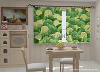 Фотошторы Лимоны в кухне 1,5м х 2,5м