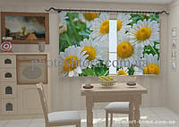 Фотошторы Белые ромашки в кухне (1,5м х 2,5м)
