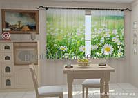 Фотошторы Ромашки Прованса в кухне (1,5м х 2,5м)