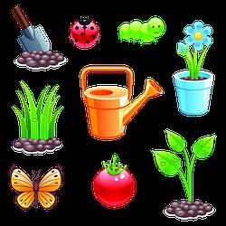 Сад, огород