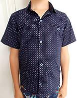 Детская рубашка с коротким рукавом  для мальчика (1-5 лет)