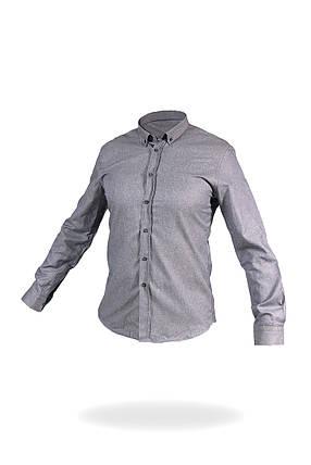 Рубашка мужская Cotton, фото 2