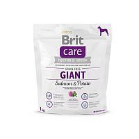 Корм для взрослых собак крупных пород Brit Care Grain-free Giant Salmon & Potato лосось/картошка, 1 кг