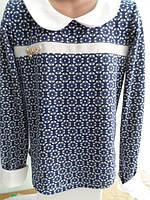 Блуза (реглан) трикотажный на девочку от 11лет