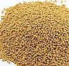 Горчица белая (гірчиця біла) семена (сидерат,медонос) мешок 50 кг. Киев, Святошино.