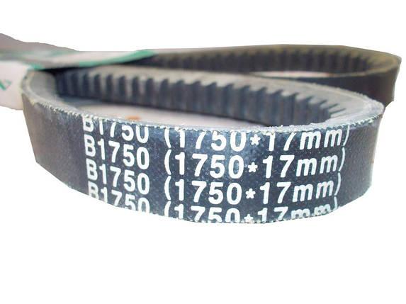 Ремень приводной B1750 (1750*17mm) AGROBELTS, фото 2