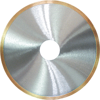 Алмазный диск ADTnS 1A1R 300x1,6x10x60 CRM 300 TM