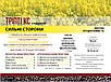 Рапс озимый ТРИПТИ КС 305-310 дн. КОССАД СЕМАНС , фото 2
