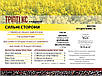 Рапс озимый ТРИПТИ КС 305-310 дн. КОССАД СЕМАНС , фото 3