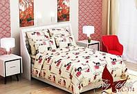 Двуспальный Комплект постельного белья ранфорс классик RC374