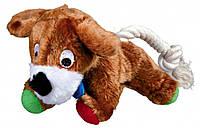 Игрушка Trixie Dog для собак плюшевая, собака с пищалкой, 17 см