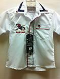 Рубашки короткий рукав, одежда для мальчиков 1-6 лет, фото 2