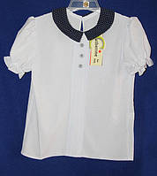 Школьная блуза на девочку с воротником в горошек,короткий рукав