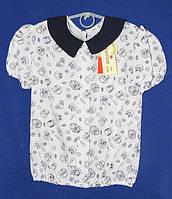 Школьная блуза на девочку с совами,короткий рукав,рост 128-158