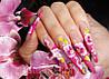 Курс «Китайская роспись ногтей», фото 2