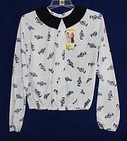 Школьная блуза на девочку с кошками,длинный рукав,рост 128-158