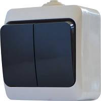 Выключатель двухклавишный В310-2-IP44N