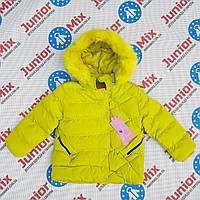 Зимняя детская куртка  для девочек   NATURE